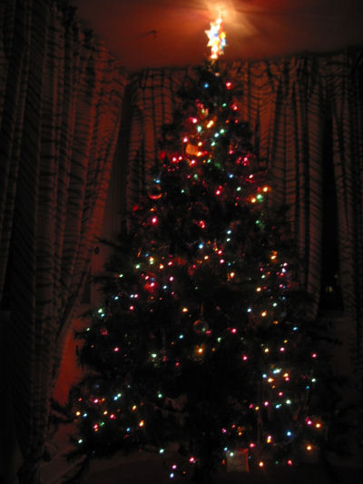 o christmas tree o christmas tree how psychedelic are your colored lights splotchysplotchy